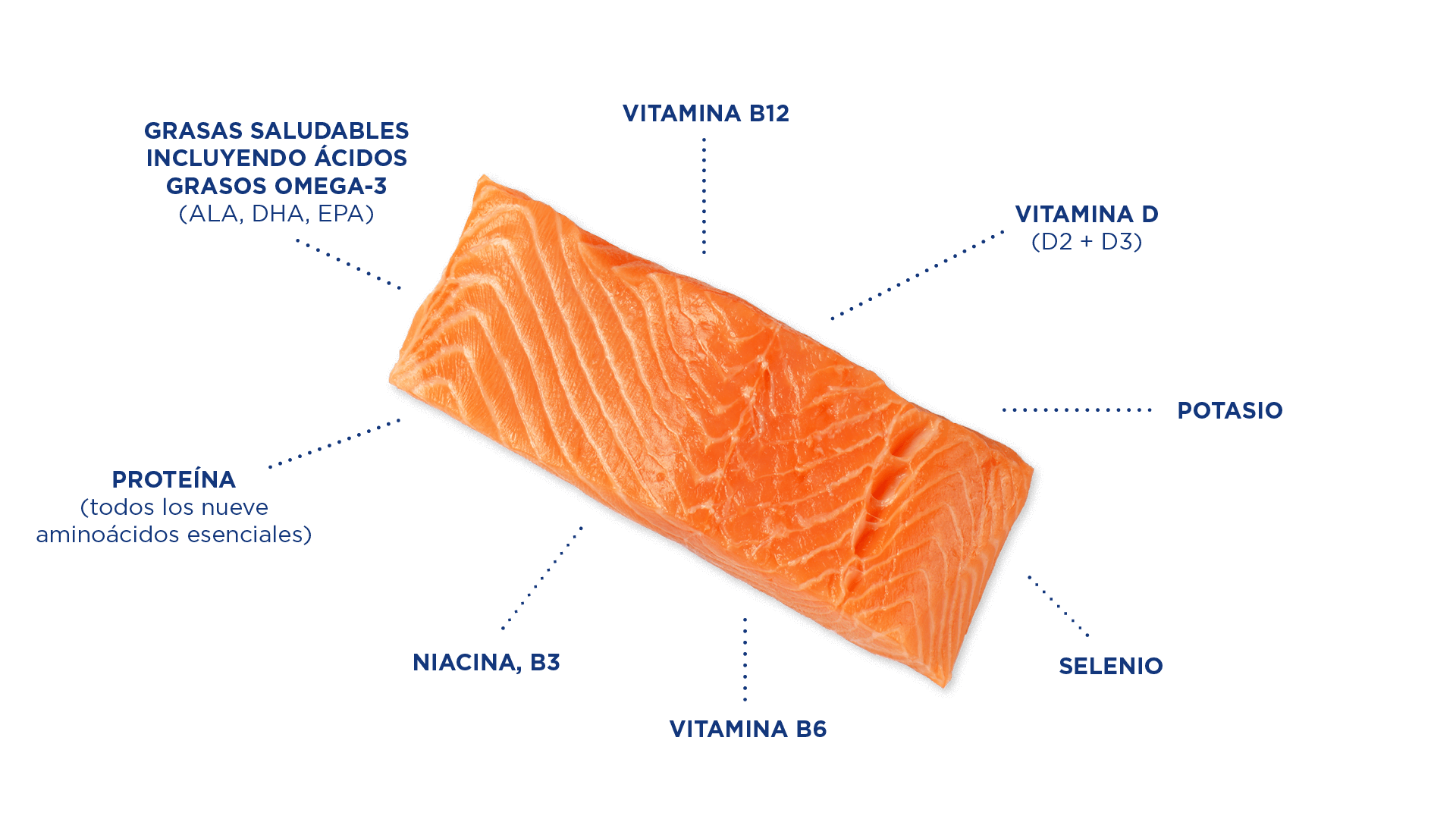 Salmon_Graphic_nutrients_SPANISH.png#asset:5170