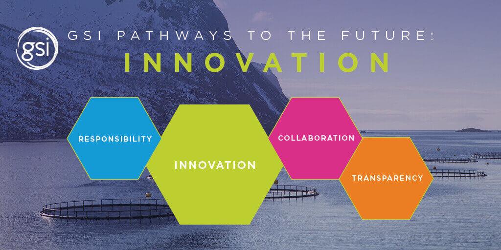 Gsi Pathways To The Future Innovation En