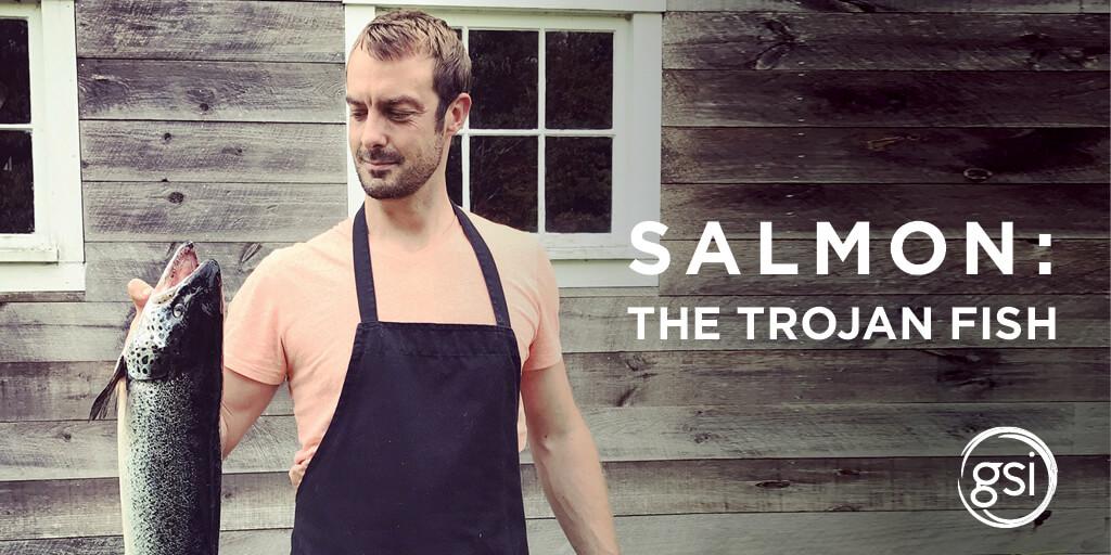 Gsi Blog Salmon Trojan Fish 1025X512 Nov5 2020 Eng