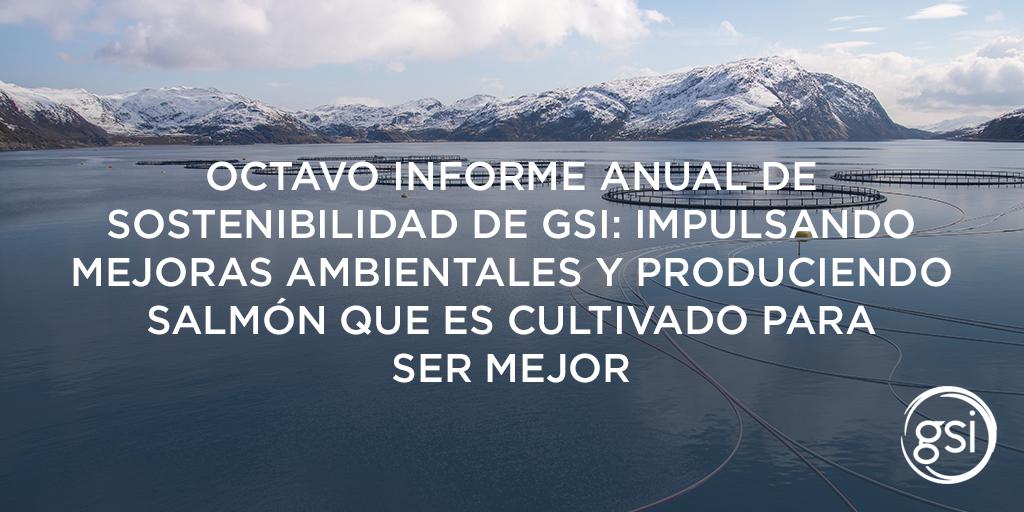 Gsi Blog Header 8Th Sustainability Report 1024X512 Spanish