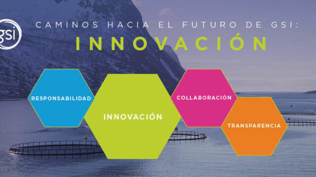 Gsi Pathways To The Future Innovation Es