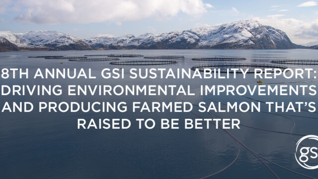 Gsi Blog Header 8Th Sustainability Report 1024X512 English