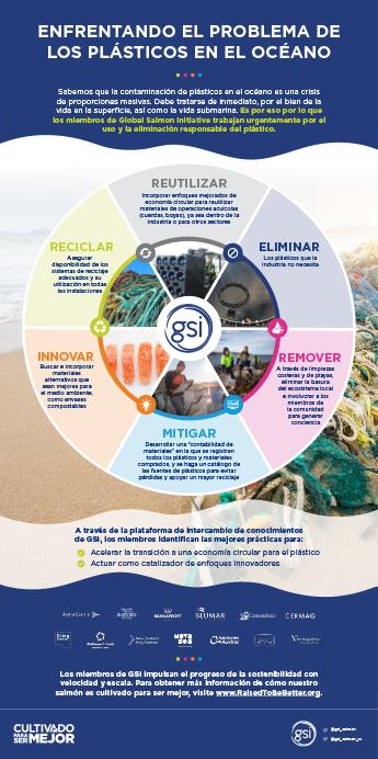 Enfrentando El Problema De Los Plásticos En El Océano