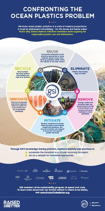 Gsi Confronting The Plastics Problem