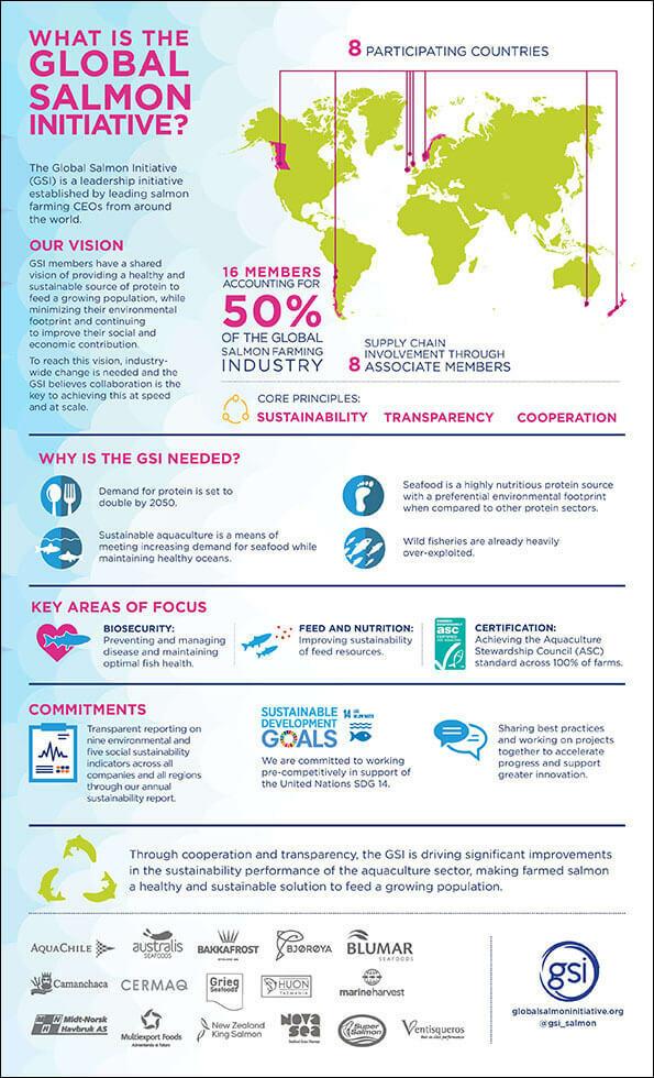 Gsi Infographic Thumb