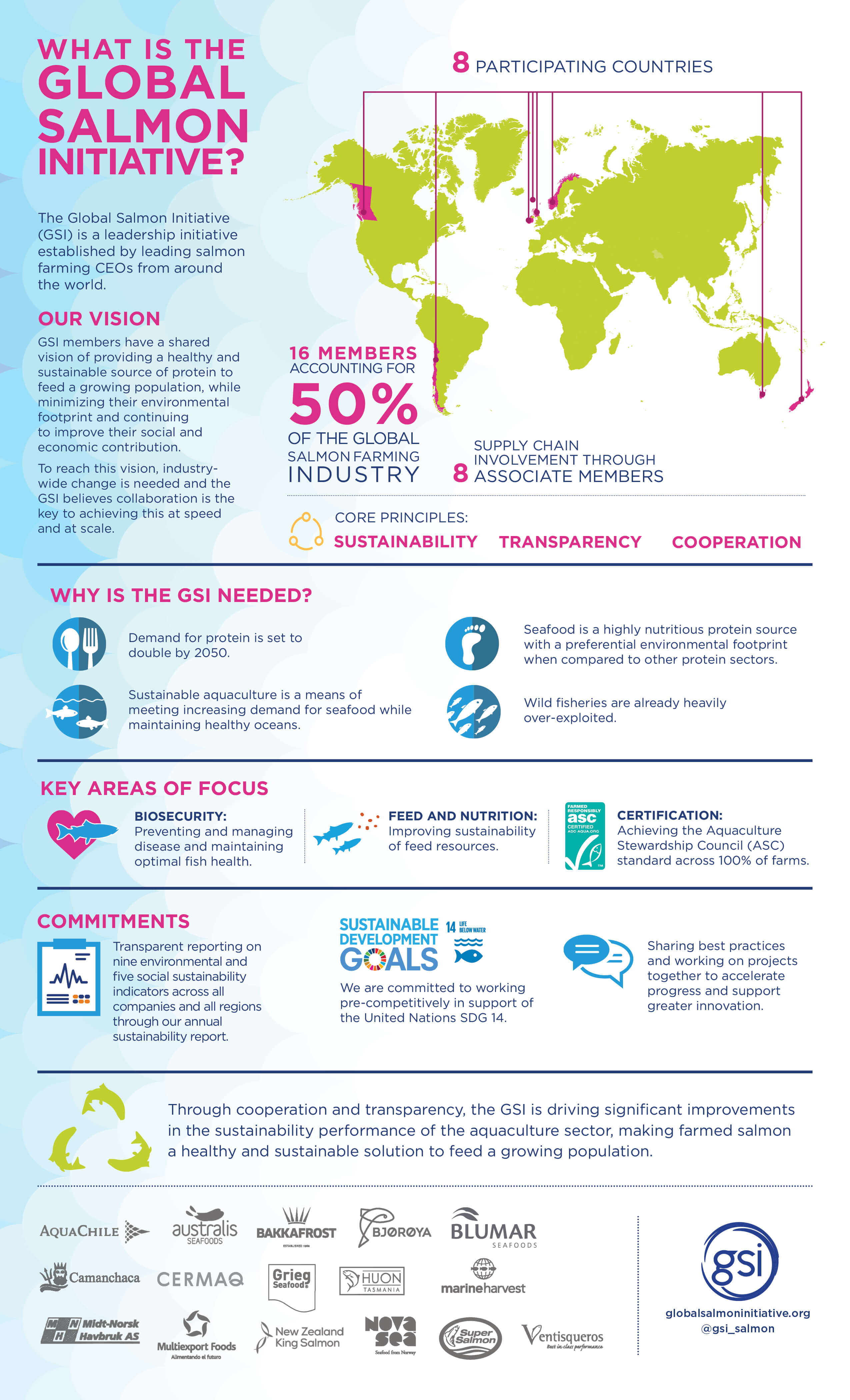 Gsi Overview Infographic