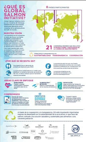 Gsi Spanish Infographic
