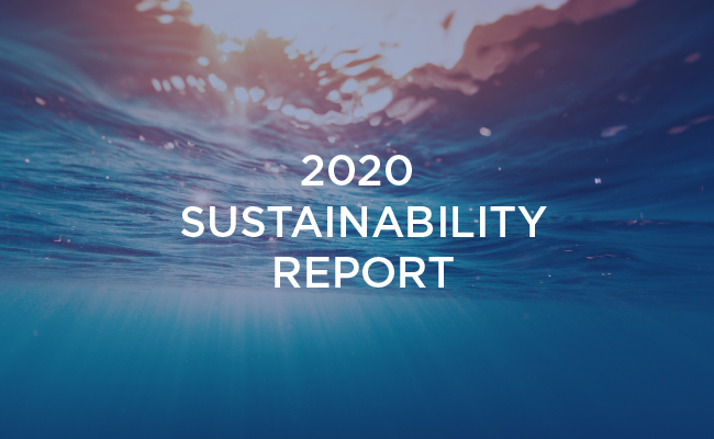 Gsi Sustainability Report Preview Resource Hub English