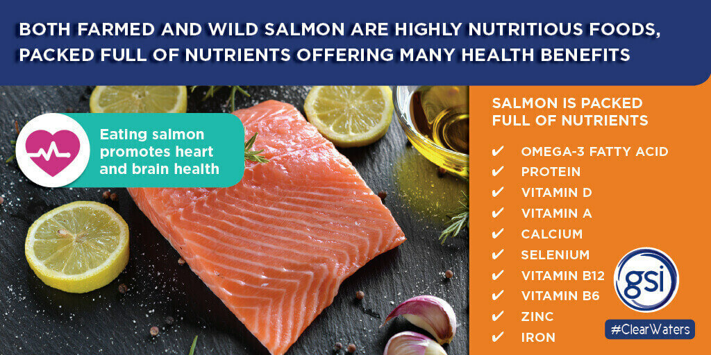 GSI Graphic explaining the health benefits of farmed salmon and wild salmon