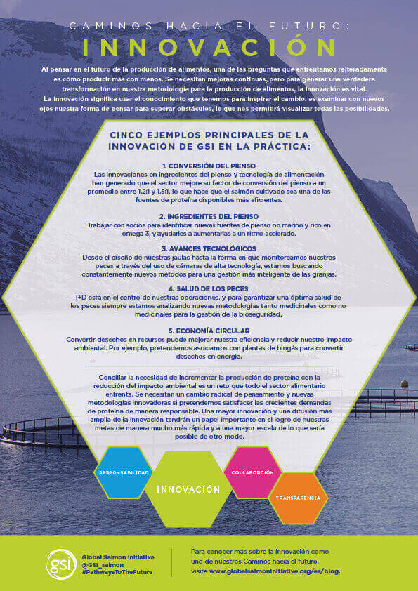 Gsi Innovation Poster Es