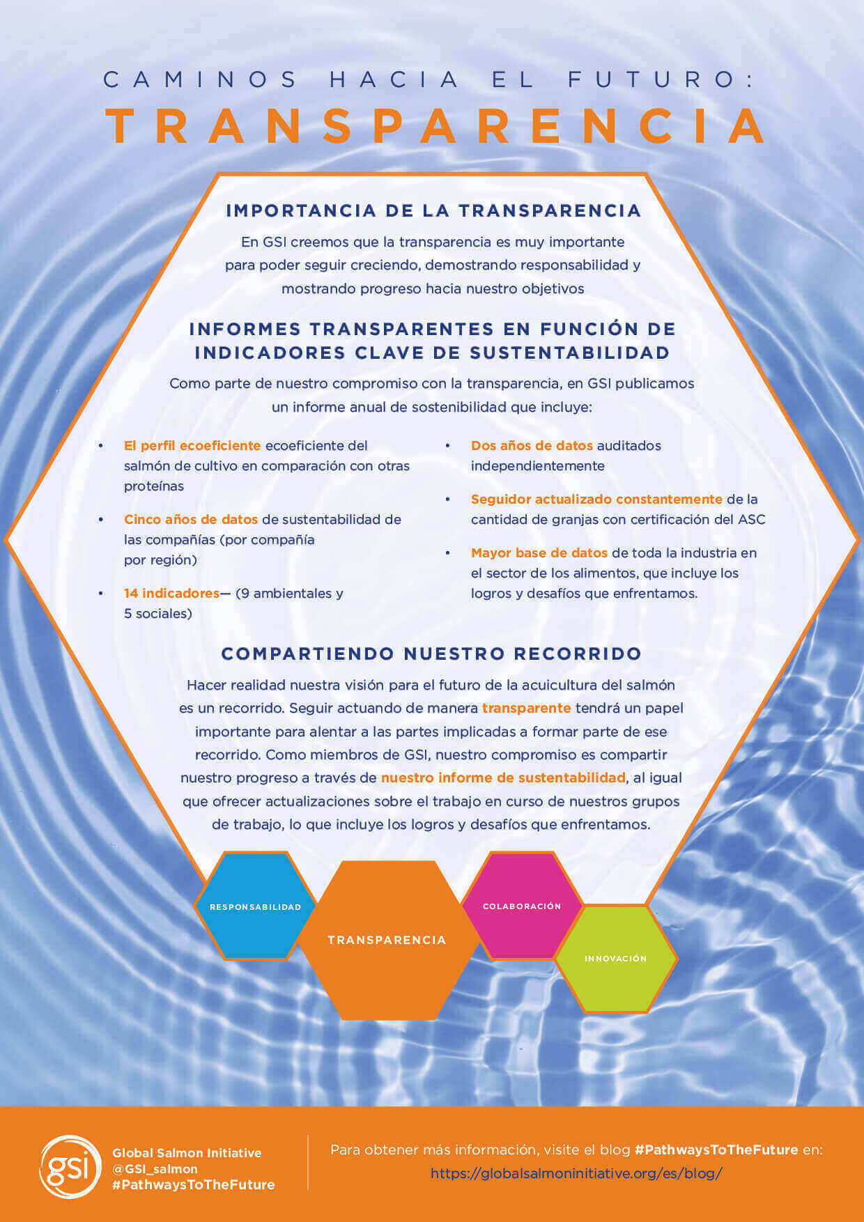 GSI Pathways Transparency To the Future Poster Spanish