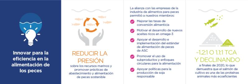 Infographic For Blog Spanish 1
