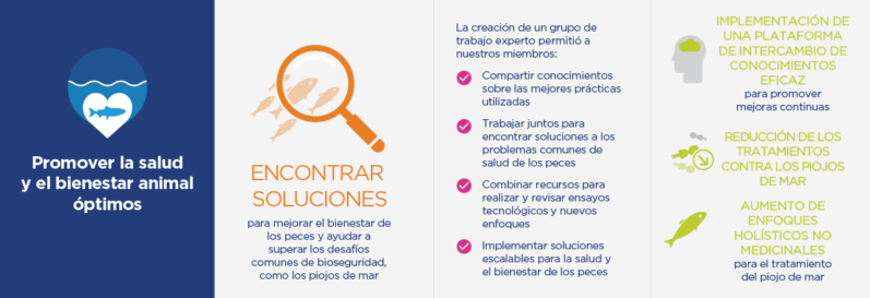 Infographic For Blog Spanish 2