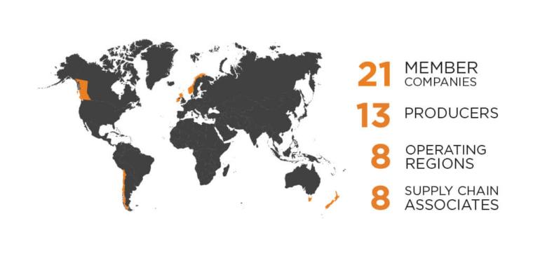 Gsi 14 Member Companies