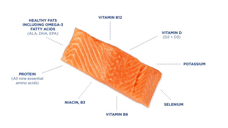 Salmon Graphic Nutrients English