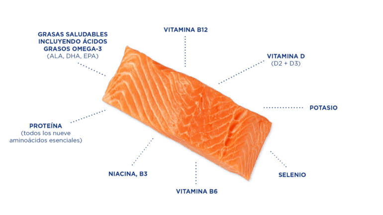 Salmon Graphic Nutrients Spanish