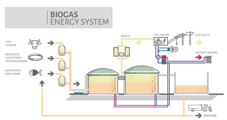 Biogas Energy System