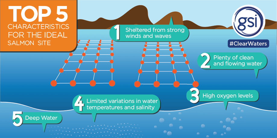 Demonstrating the considerations taken into account when planning the location of a salmon farm